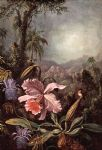 martin johnson heade orchids passion flower and hummingbirds painting 81418