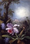 martin johnson heade orchids passion flowers and hummingbird painting 29362