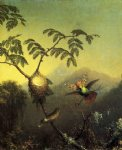 martin johnson heade two hummingbirds tufted coquettes painting