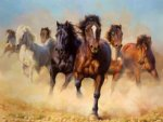 original paintings a drove of horses oil painting