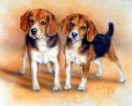 original two beagles by original paintings painting