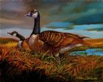 original canada bird geese oil paintings