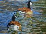 original canada birds geese in water oil paintings