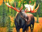 original canadian bull moose robert pankey canada animal painting-86453