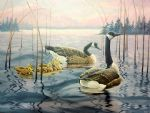 original goose canada bird painting-86470
