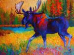 original majestic monarch  moose marion rose canada animal painting-86660