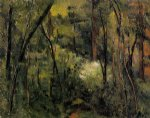 in the woods iii by paul cezanne painting
