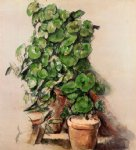 pots of geraniums by paul cezanne painting
