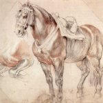 peter paul rubens etude of horse paintings