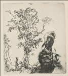 sketch of a tree by rembrandt van rijn painting