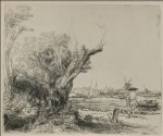 view of ovmal near amsterdam by rembrandt van rijn painting