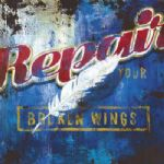 repair your broken wings by rodney white painting