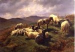 sheep in the highlands by rosa bonheur painting