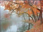 mike jones autumn reflections by unknown artist painting