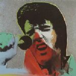 steve kaufman elvis ii by unknown artist painting