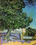 vincent van gogh chestnut trees in bloom painting