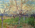 vincent van gogh orchard with blossoming apricot trees painting