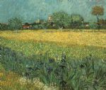 view of arles with irises by vincent van gogh painting