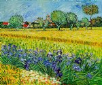 view of arles with irises ii by vincent van gogh painting