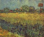 view of arles with irises in the foreground by vincent van gogh painting