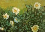 rose paintings - wild roses by vincent van gogh