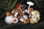 william aiken walker mushrooms oil painting