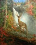 majestic stag by william beard painting