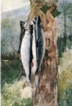 winslow homer adirondack catch painting