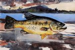 bass by winslow homer painting