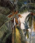coconut palms key west by winslow homer painting