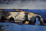 coral formation by winslow homer painting