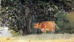 cow in pasture by winslow homer painting