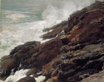 high cliff coast of maine by winslow homer painting