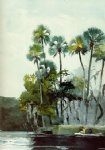homosassa river by winslow homer painting