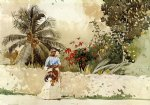 on the way to market bahamas by winslow homer painting