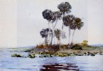 st. john s river florida ii by winslow homer painting