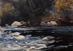 the rapids husdon river adirondacks by winslow homer painting