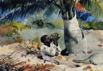 under the coco palm by winslow homer painting